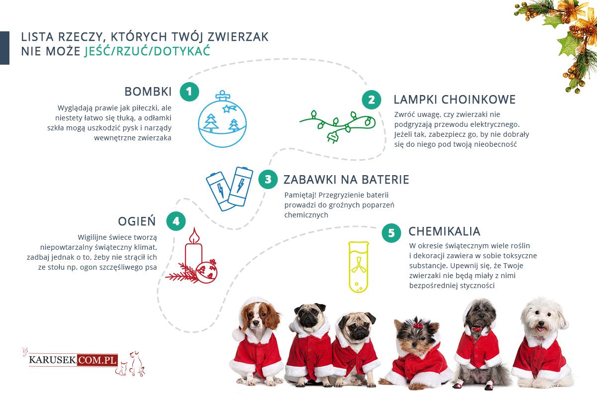 Bezpieczne święta psa i kota - dekoracje