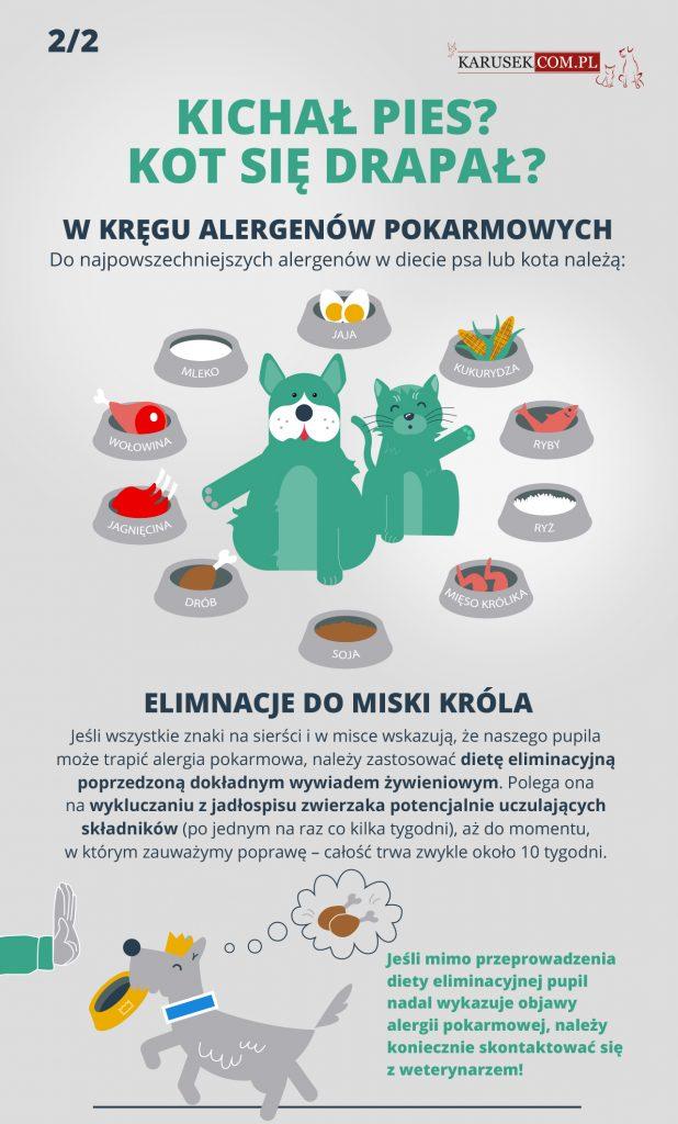 Infografika jak rozpoznać alerię pokarmową u zwierzaka - spis alergenow
