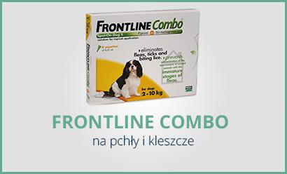 1_2_FRONTLINE